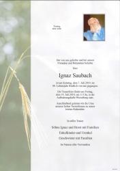 2019-07-07_Saubach_Ignaz